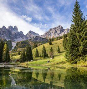 Wandern im Hofalmgebiet rund um die Bischofsmütze - Oberhofalm Filzmoos